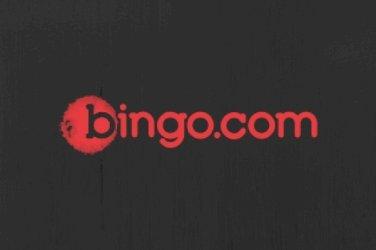 bingoooo